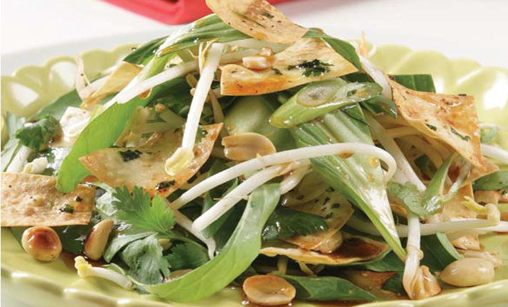 Mountain-bread munchies with Asian green salad showing bok choy bean sprouts and peanuts